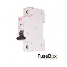 FuseBox Single Pole 10A MCB MT06B101